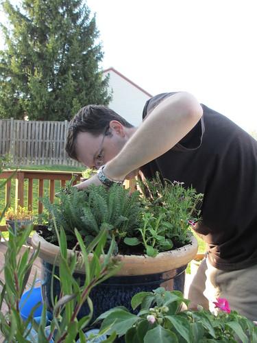 Mark planting