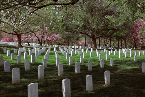 Arlington National Cemetery - 2012-04-05