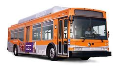 mta bus orange and white