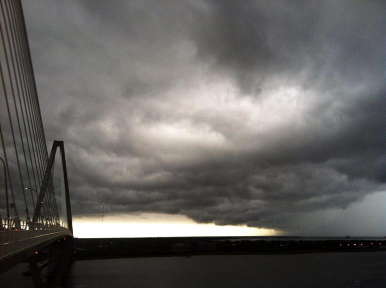 web_bridgetop_whales_0056