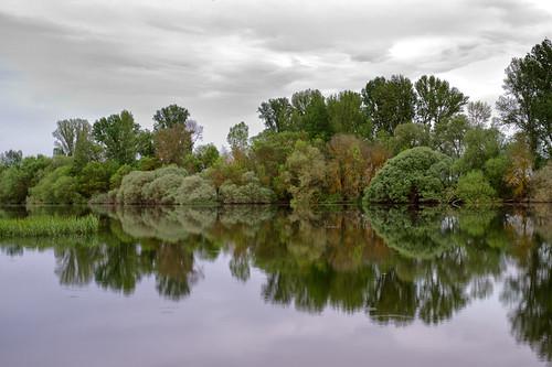 En los espejos del río by Andrés Ñíguez