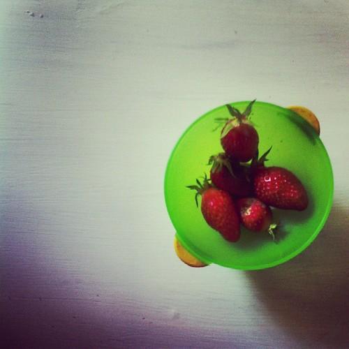 Vive les fraises dans le jardin. #ourlittlefamily #france