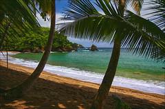 Englishman's Bay, Tobago, W.I.
