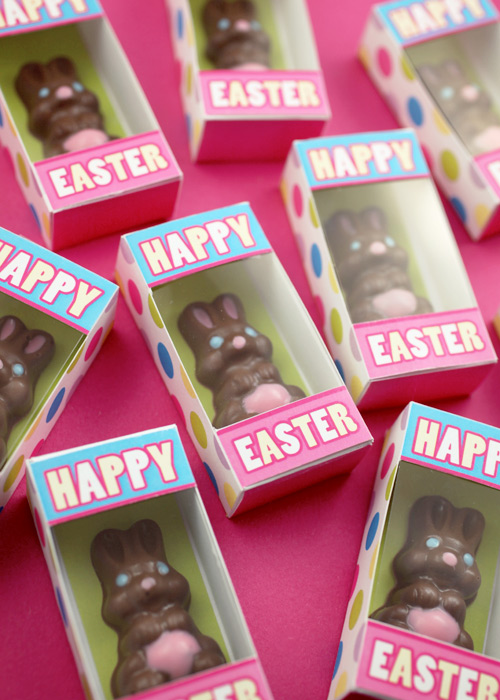 bakerella-chocolate-bunny-0854