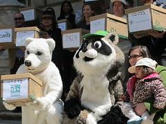 giant panda(0.0), bear(1.0), mascot(1.0),