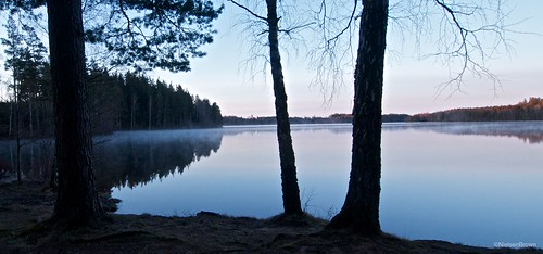 Mist on Stora Alljungen
