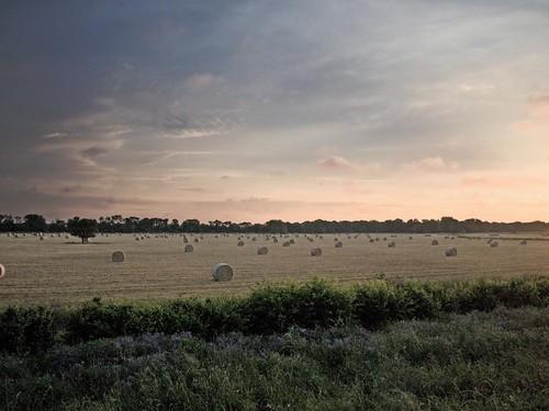 morning blue tree grass clouds rural sunrise dawn texas olympus pasture hay huntcountytx gtowneric e620 ericwhodel