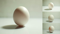 sphere(0.0), easter egg(0.0), egg white(0.0), white(1.0), egg(1.0), food(1.0), egg(1.0), close-up(1.0), lighting(1.0),
