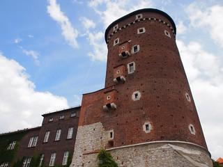 Image of Wawel Castle near Kraków. travel europe nazi culture poland polska kraków auschwitz worldwar2 cracovia concentrationcamp krakau reizen 2014 deathcamp citytrip auschwitzbirkenau concentrationcamps arps paularps