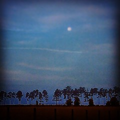 Supermoon, Chemtrails and Cow Pasture