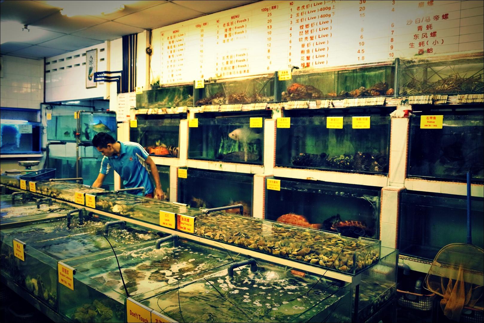 무얼 먹을까?-'코타키나발루 웰컴 시푸드 레스토랑 Welcome Seafood Restaurant Kota Kinabalu'