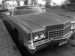 lincoln mark series(0.0), lincoln continental mark v(0.0), lincoln continental(0.0), antique car(0.0), coupã©(0.0), automobile(1.0), automotive exterior(1.0), vehicle(1.0), cadillac calais(1.0), full-size car(1.0), sedan(1.0), classic car(1.0), land vehicle(1.0), luxury vehicle(1.0),