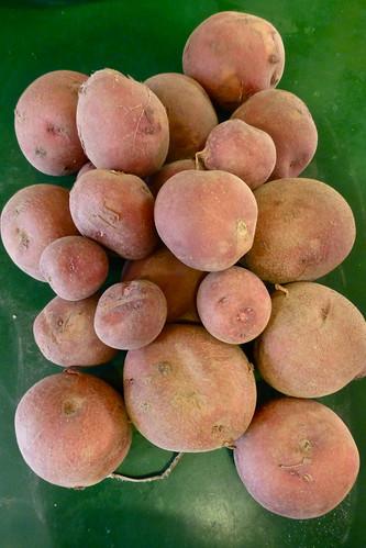 Shreveport Farmers Market potatoes