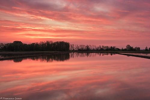 sky italy water sunrise canon reflections dawn italia alba piemonte ricefield acqua risaia novara canoneos60d tamronsp1750mmf28xrdiiivcld casaleggiodinovara