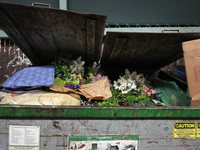 flowers in the garbage