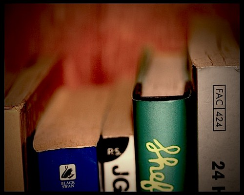 Lomo fun.. book shelves