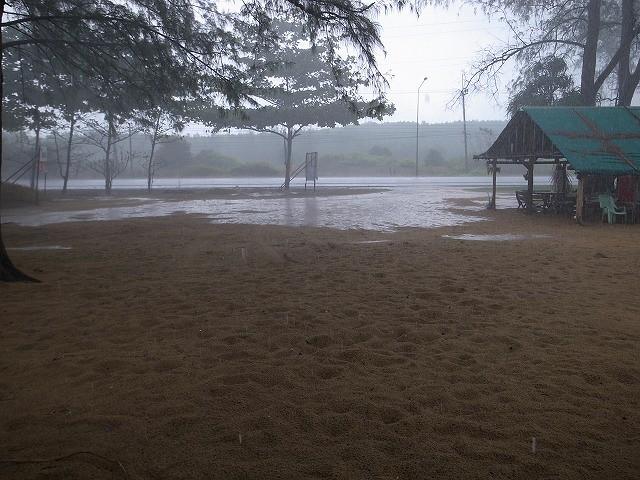 <p>あっという間に車道から流れ出す雨水</p>