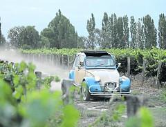 Los caminos del vino a bordo de un clásico Citroën