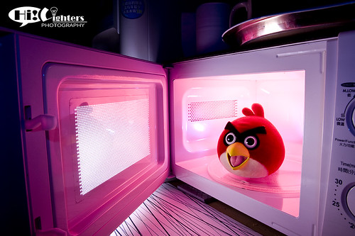 Angry Bird in Microwave