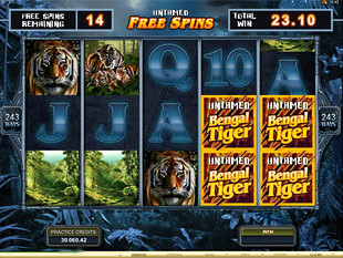Untamed Bengal Tiger Bonus Feature