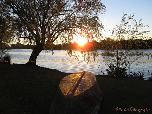 autumn sunset tree nature canon river uruguay is san shadows shot powershot salvador dolores in sx130
