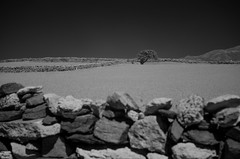 The infrared fields of Antiparos