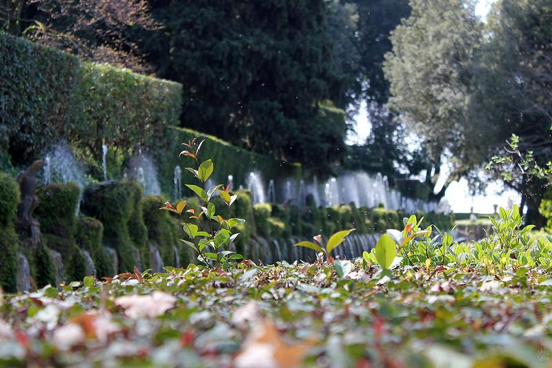 Le Cento Fontane (The Hundred Fountains), Villa d'Este (villa in Tivoli). Дорога ста фонтанов, Вилла д'Эсте (Вилла Тиволи)