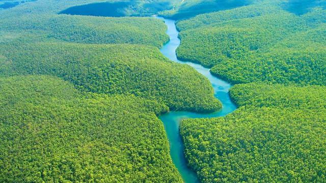 1amazon-rainforest-hero.jpg
