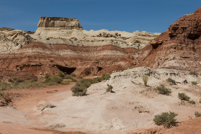 Trailhead to Toadstool Trail - Grand Staircase-Escalante National Monument