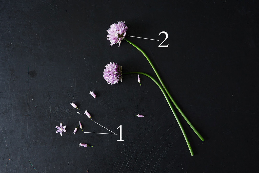 All About Chives and Chive Blossoms, from Food52