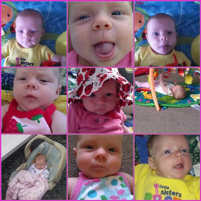 Baby Sister Mosaic