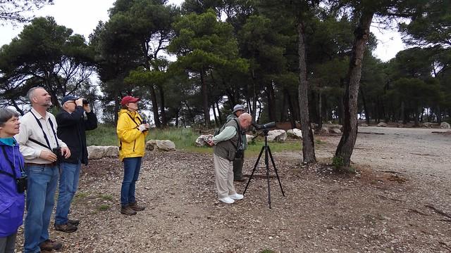 La Caume birders birding