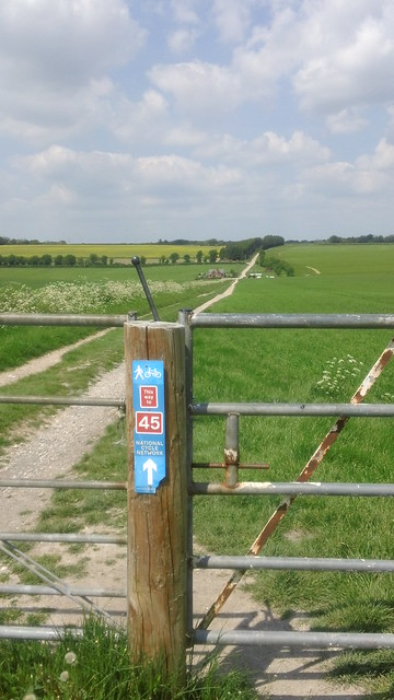 path 45 from Old Sarum ...