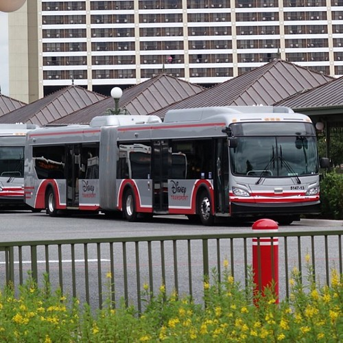 連節バス、初めて見た。