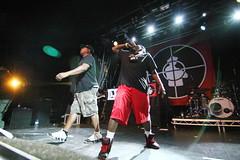Public Enemy concert in London 07.06.14