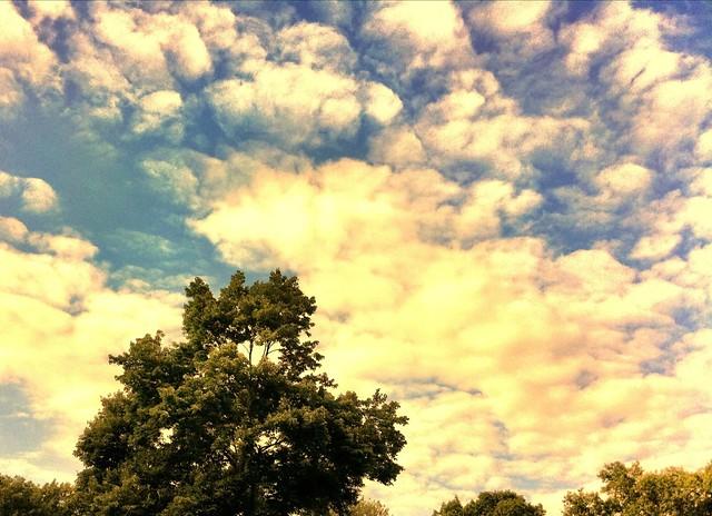 Summer Sky 3