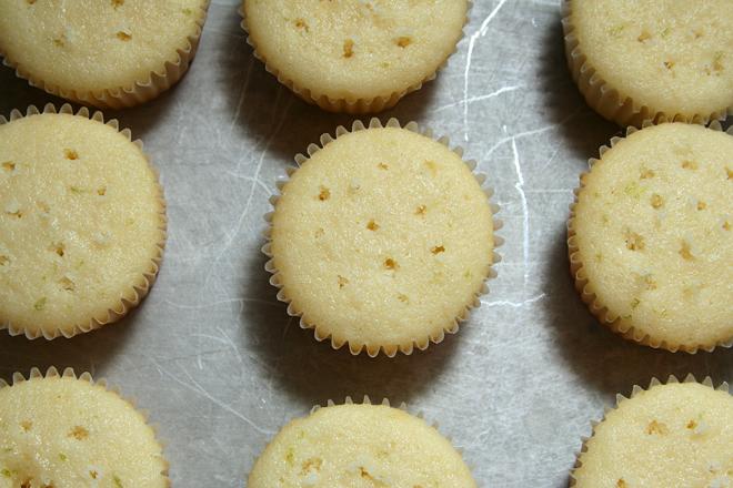margarita cupcakes 3