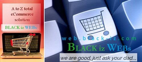 ecommercewebsites2