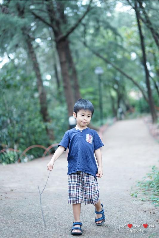 Walk with Stick