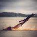 """""""Planking"""" by Marina Gondra"""