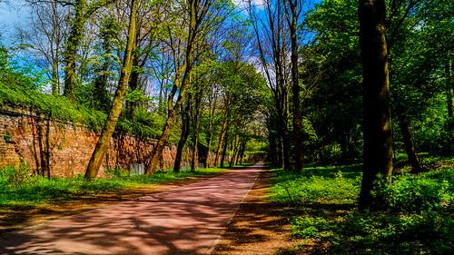 Promenade Lilloise