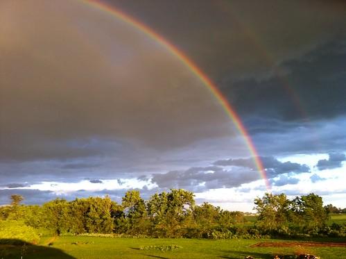 trip rainbow