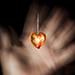 heart by GUSTAVO F. VELARDE