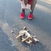 Small photo of \m/etal // roadkill