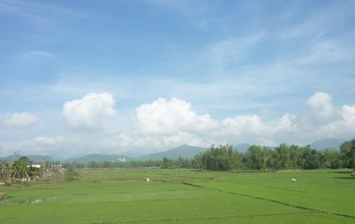V-Route Quy Nhon-Da Nang (10)