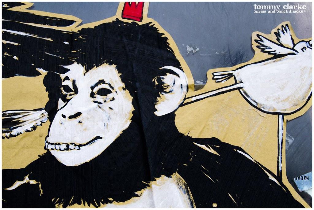 close up...monkey