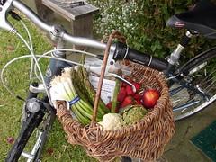 Veggie Basket by Mari