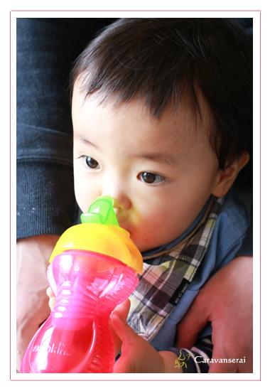 1才のお誕生日 記念写真 端午の節句 ロケーション撮影 自宅 愛知県瀬戸市 家族写真 子供写真 出張撮影