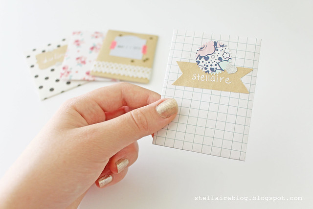 stellaire envelope