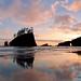 Second Beach Reflection by Tessa Hoplin